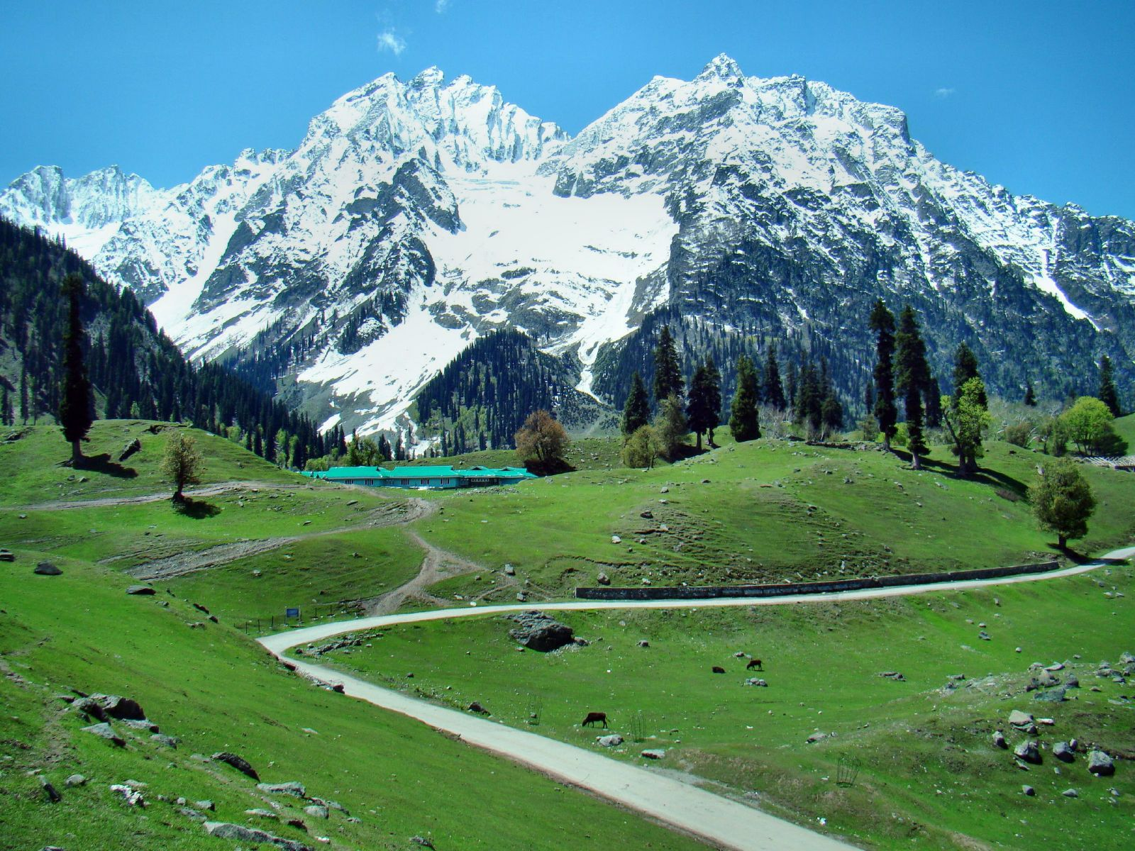 Here Are The Best Things To Do In Kashmir